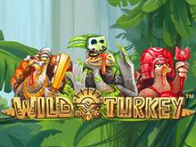 Слот Wild Turkey